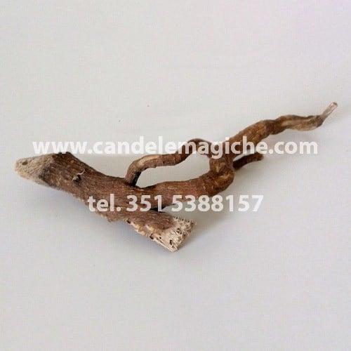 confezione di radici di mandragora